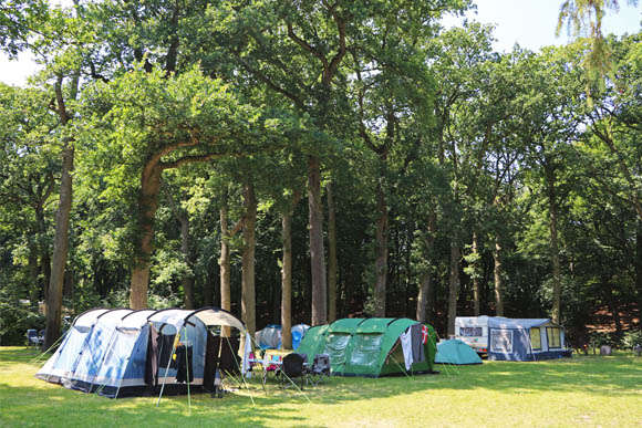 Or book your Camp site or Lodge tent